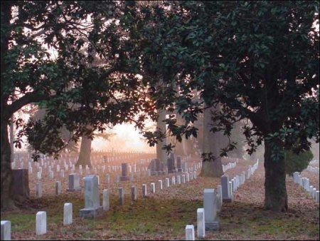 Arlington National Cemetery in the Fog